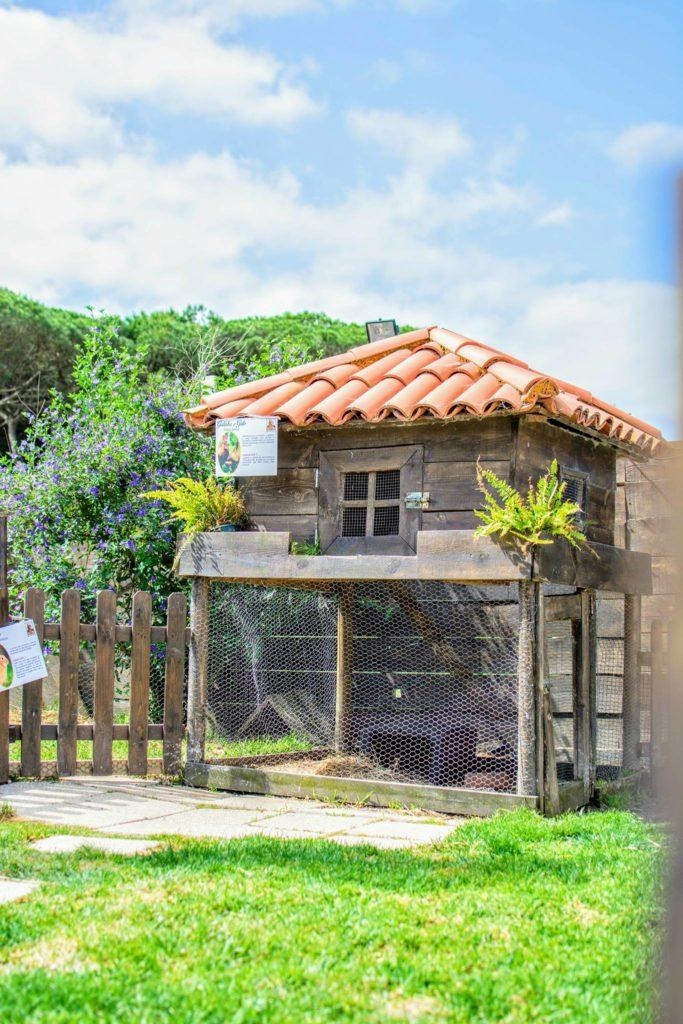 Quinta Sintra1
